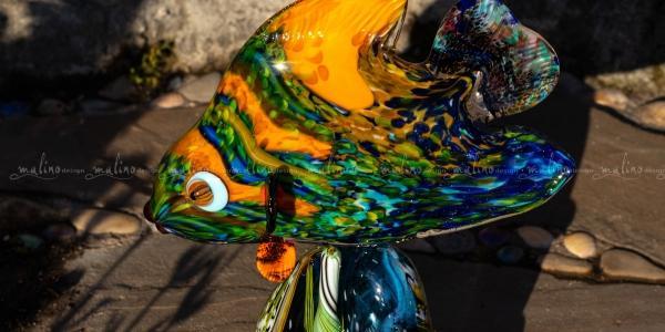 Рыбка на рифе