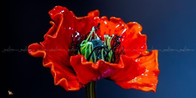 Стеклянный цветок МАК – примеры ранее выполненных работ