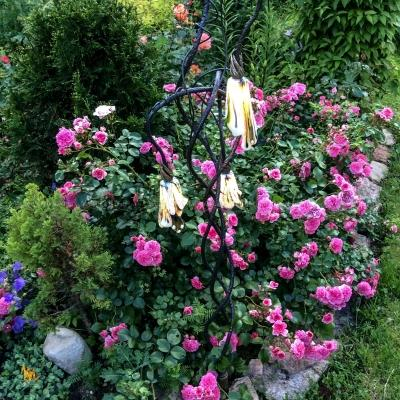 Бабочки – примеры ранее выполненных работ