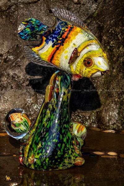 Рыбка на рифе – примеры ранее выполненных работ